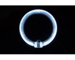 Кольца подсветки (Ангельские глазки )  BAXSTER 80MM (2шт)